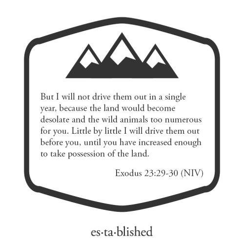 Exodus 23:29-30